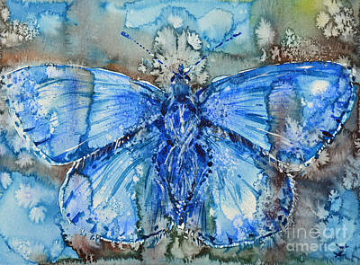 Painting - Adonis Blue by Zaira Dzhaubaeva
