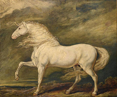 Painting - Adonis The Favourite Charger Of King George IIi by James Ward