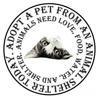 Andee Design Monochrome Photograph - Adopt A Pet T-shirt Design by Andee Design