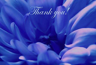 Photograph - Adorable Blue Thank You by Johanna Hurmerinta