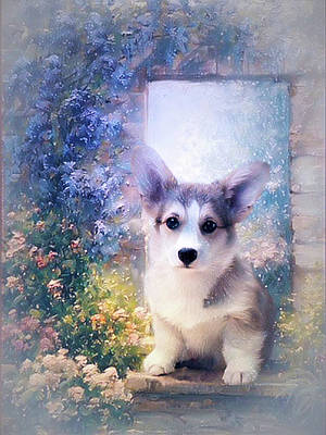 Digital Art - Adorable Corgi Puppy by Kathy Kelly