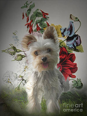 Painting - Adorable Yorkie And Rose Photo Painting by Heinz G Mielke