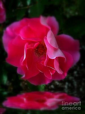 Photograph - Adoration by Elfriede Fulda