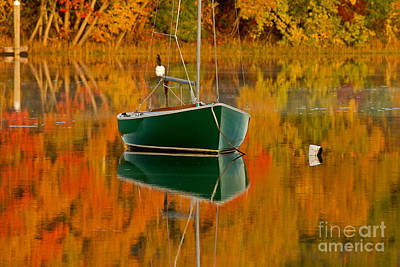 Photograph - Adrift In Color II by Butch Lombardi