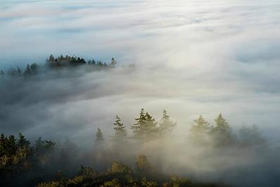 Photograph - Adrift In Fog by Robert Potts