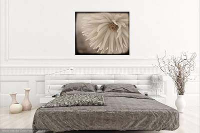 Photograph - Adult Bedroom 1 by Patricia Strand