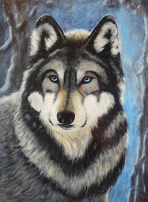 Painting - Adult Grey Wolf by David Hawkes