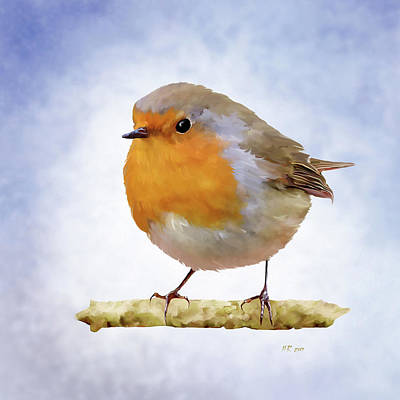 Painting - Adult Red Robin by Bamalam Photography