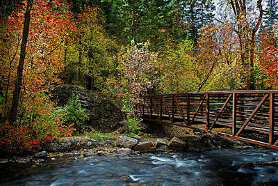 Photograph - Adventure Bridge by Scott Read