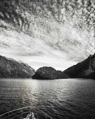 Photograph - Adventure Cruise At Doubtful Sound In Black And White by Daniela Constantinescu