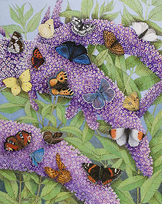 Butterfly Painting - Adventuring by Pat Scott