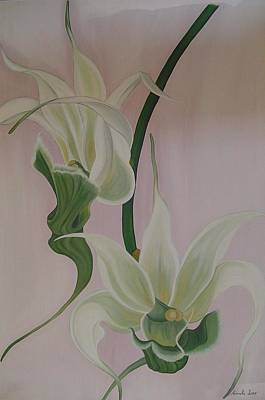 Painting - Aeranthes Peyrot Orchide by Marinella Owens