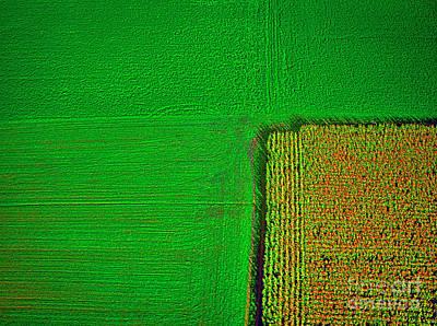 Aerial Farm Mchenry Il  Art Print by Tom Jelen