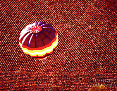 Photograph - Aerial Over Corn Field 455300091 Hot Air Ballon by Tom Jelen