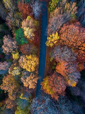 Photograph - Aerial View Of A Stunning Autumn Woodland Scene by Autumn Scenes
