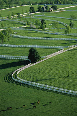 Horse Fence Photograph - Aerial View Of Donamire Farms Fenced by Melissa Farlow