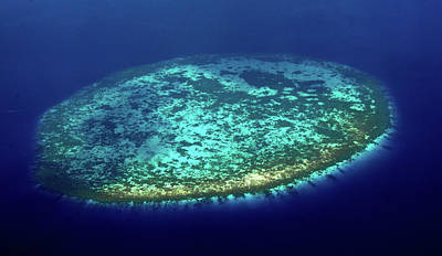 Photograph - Aerial View Of Rounded Coral Reef. Maldives by Jenny Rainbow