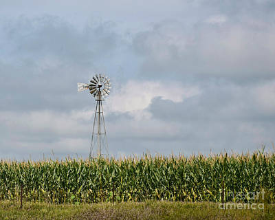 Photograph - Aermotor Windmill In Corn Field by Kathy M Krause