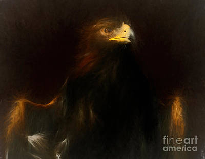 Birds Painting - Aetos Dios Golden Eagle - Painting by Sue Harper