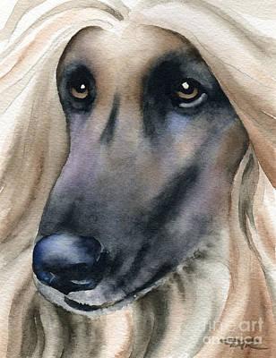 Afghan Hound Watercolor Painting - Afghan Hound by David Rogers