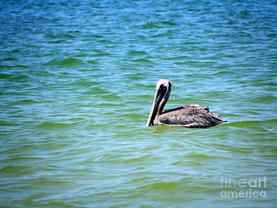 Art Print featuring the photograph Afloat by Terri Mills