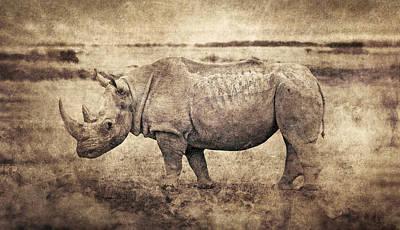 Epic Digital Art - Africa Series - Rhino by Brett Pfister