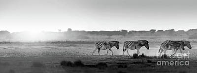 Photograph - Africa Sunset Landscape Black And White by Tim Hester