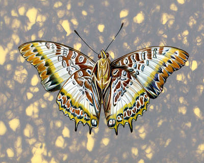 Mix Medium Mixed Media - African Butterfly by Mindy Lighthipe