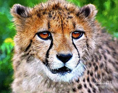 Scenic Mixed Media - African Cheetah Up Close by Garland Johnson
