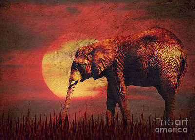 Elephant Digital Art - African Elephant by Angela Doelling AD DESIGN Photo and PhotoArt