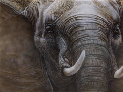 African Gray Painting - African Elephant by Wayne Pruse