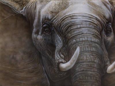 Terrestrial Painting - African Elephant by Wayne Pruse