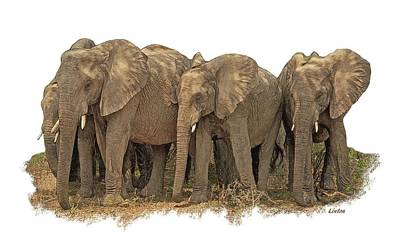 Digital Art - African Elephants 2 by Larry Linton