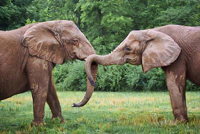 Photograph - African Elephants by Nikolyn McDonald