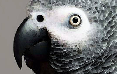 Parrot Painting - African Gray Parrot Art - Softy by Sharon Cummings
