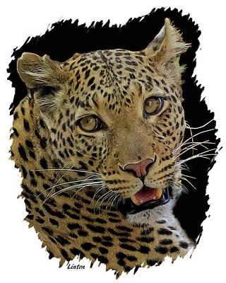 Digital Art - African Leopard Portrait by Larry Linton