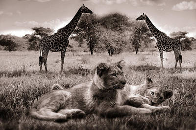 Photograph - African Life by Christine Sponchia