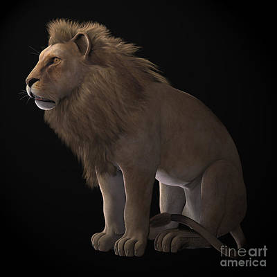 Pride Painting - African Lion On Black by Corey Ford