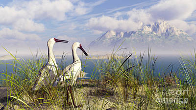 Spoonbill Digital Art - African Spoonbills Enjoying The View by Diana Voyajolu