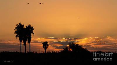 Photograph -  African Style Sunset 02 by Arik Baltinester
