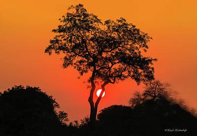Photograph - African Sunrise by Kay Kochenderfer