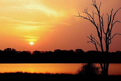 Photograph - African Sunset At Shire River In Malawi 01 by Dora Hathazi Mendes