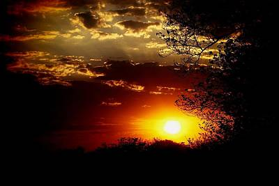 Photograph - African Sunset by Dora Hathazi Mendes