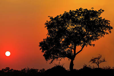 Photograph - African Sunset by Kay Kochenderfer