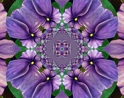 Houseplant Digital Art - African Violet Wave by Barbara Griffin
