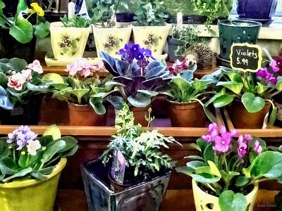 Photograph - African Violets For Sale by Susan Savad