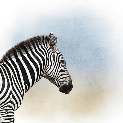 Photograph - African Zebra Closeup Square by Susan Schmitz