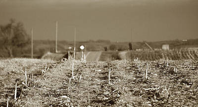 Photograph - After Harvest by Thomas Bomstad
