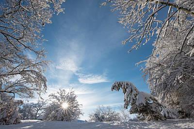 Photograph - After Heavy Snow by Jianmei Fan