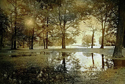 Rainy Day Photograph - The After Rain by Diana Angstadt